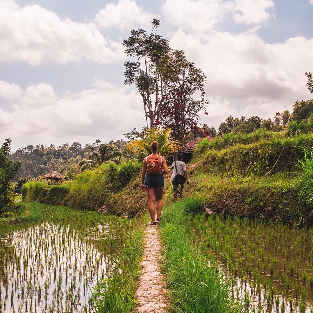 Joana a caminhar nos trilhos dos campos de arroz