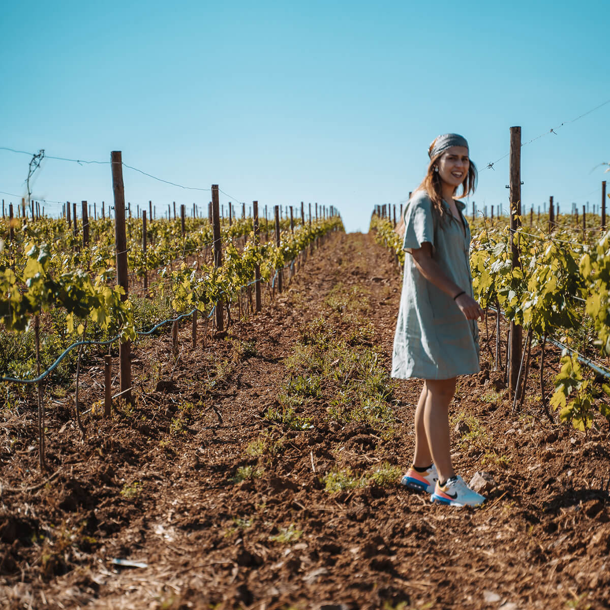 Joana nas vinhas da Herdade da Malhadinha Nova